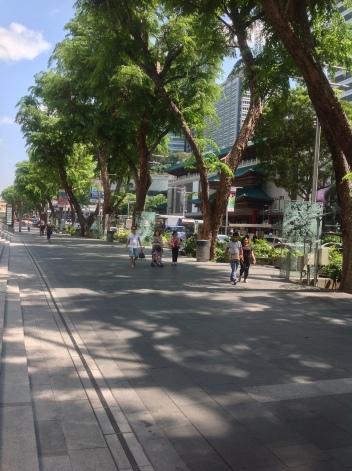 Orchard Pedestrian